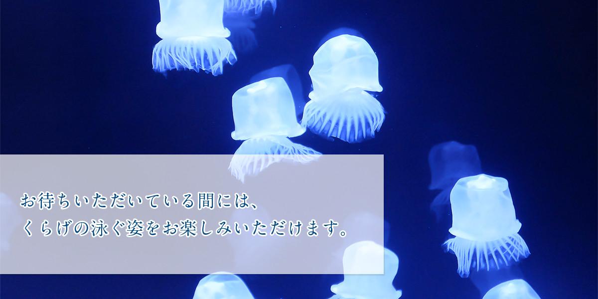 千葉北佐々木クリニック