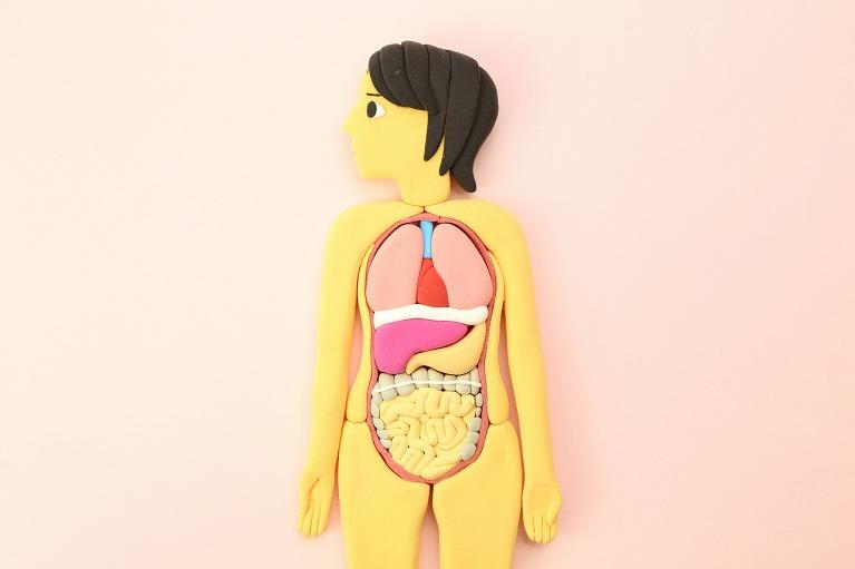 大腸カメラ(大腸内視鏡)検査でわかる病気